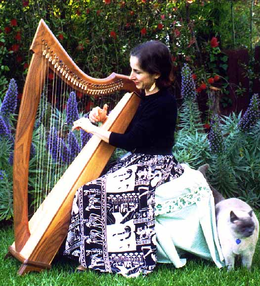 Stephanie at Celtic harp