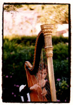 Stephanie Bennety playing harp at a wedding.